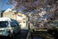 京都新聞写真コンテスト「デイサービス・車窓からの花見」