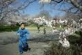 京都新聞写真コンテスト「保育園児のお外遊び」
