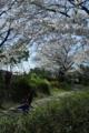 京都新聞写真コンテスト「園児の外遊び」