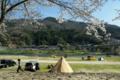 京都新聞写真コンテスト「春キャンプの思い出」
