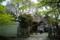 京都新聞写真コンテスト「養源院」