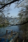 京都新聞写真コンテスト「静かな入り江」