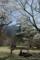 京都新聞写真コンテスト「妻との外メシ」