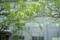 京都新聞写真コンテスト「残業の窓」