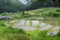 京都新聞写真コンテスト「里山の棚田」
