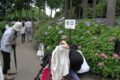 京都新聞写真コンテスト「小さなモデルさん」