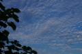京都新聞写真コンテスト「9月の空」