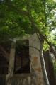 京都新聞写真コンテスト「廃墟の窓辺」