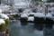 京都新聞写真コンテスト「冬の池」