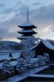 京都新聞写真コンテスト「新年の雪化粧」