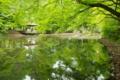 京都新聞写真コンテスト 「水辺の読書」