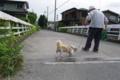 京都新聞写真コンテスト 「ふたりの家路」
