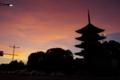 京都新聞写真コンテスト 「家路の赤信号」