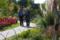 京都新聞写真コンテスト 「梅小路・ほっとふれあい花壇」