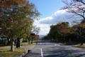 京都新聞写真コンテスト「湖が見える坂道」