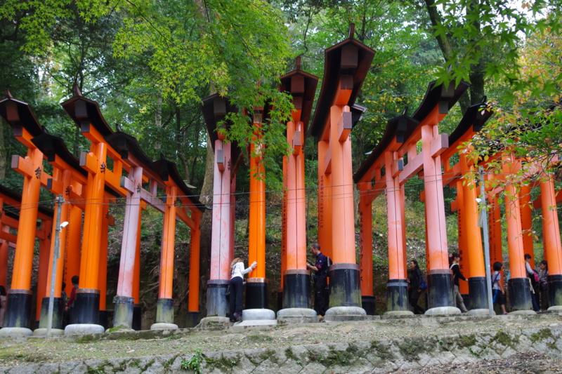 京都新聞写真コンテスト「オータム・イン・いなり」