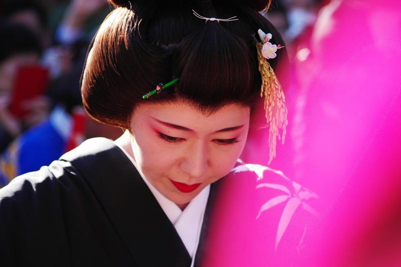 京都新聞写真コンテスト「朝参」