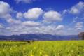 京都新聞写真コンテスト「早春の空」
