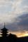 京都新聞写真コンテスト「新しい朝」