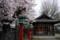 京都新聞写真コンテスト「静寂」