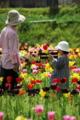 京都新聞写真コンテスト「陽春の少女」