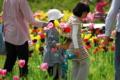 京都新聞写真コンテスト「ふたりの妹」