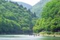 京都新聞写真コンテスト 「水上散策」