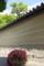 京都新聞写真コンテスト 「5月の木陰」