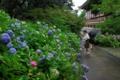 京都新聞写真コンテスト「毎日撮ってます・通学路」