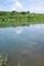 京都新聞写真コンテスト 「夏の水辺」