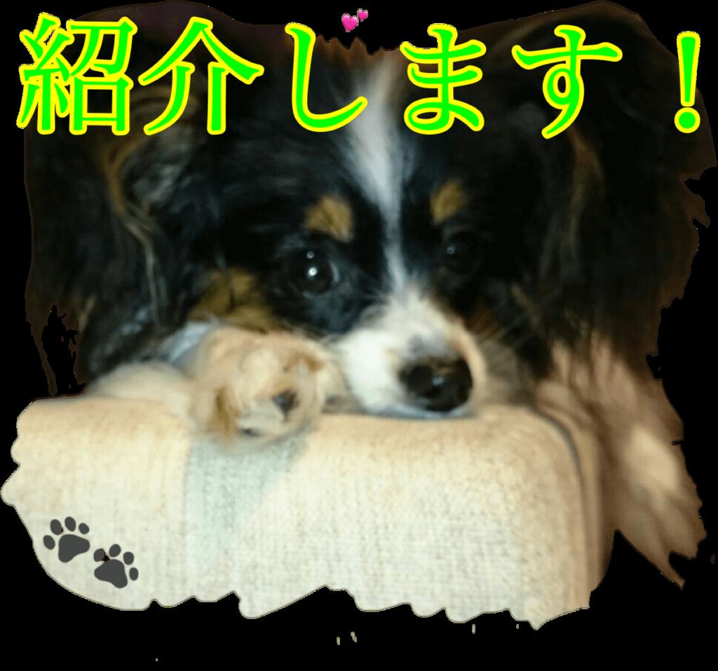 f:id:karu_cha:20190120152255p:plain