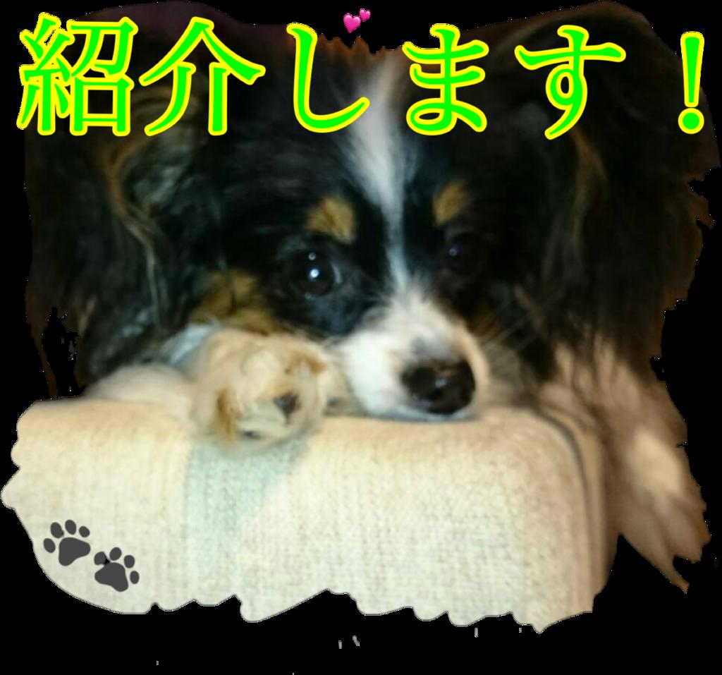 f:id:karu_cha:20190212194850p:plain