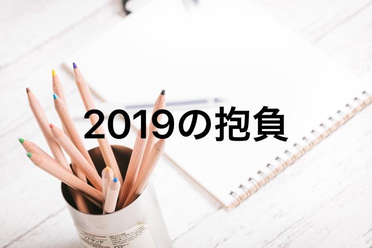 f:id:karuhada:20190103005429j:plain