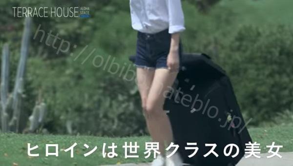 f:id:karuhaito:20161023195807j:plain