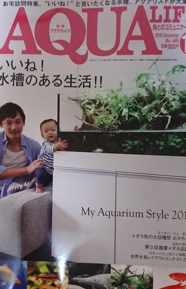 f:id:karuhaito:20161119194224j:plain