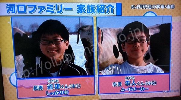 f:id:karuhaito:20170411203002j:plain