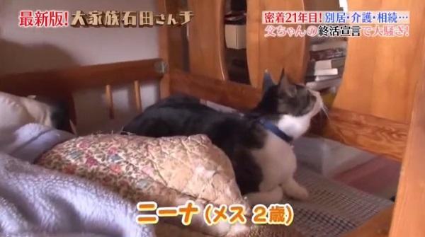 f:id:karuhaito:20170610145702j:plain