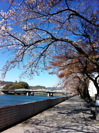 f:id:karumi:20110404144735j:image