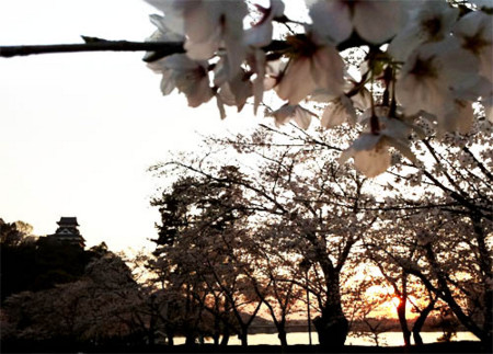 f:id:karumi:20110407125249j:image