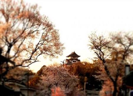 f:id:karumi:20110407125602j:image