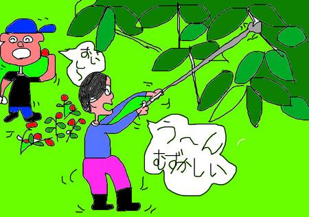f:id:karupisupipi:20080603231224j:image