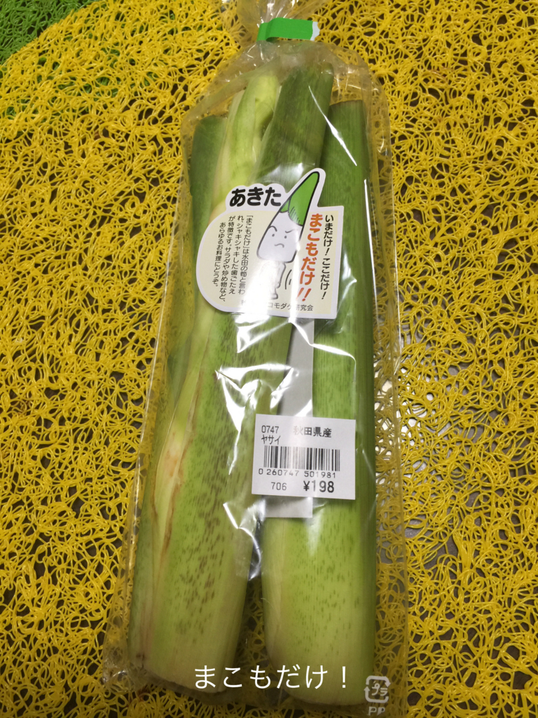 f:id:karutakko-muratan:20161018104155j:plain