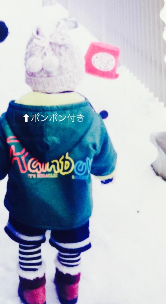 f:id:karutakko-muratan:20170119090619j:plain