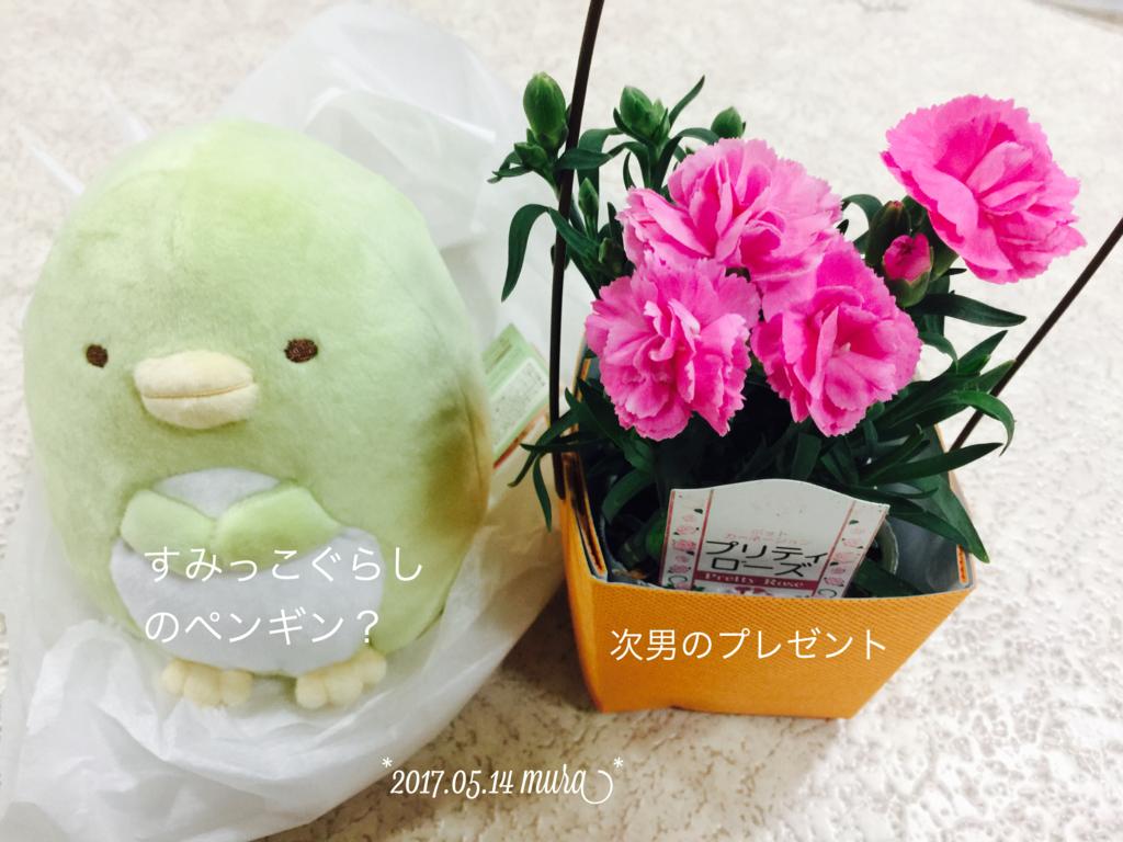 f:id:karutakko-muratan:20170515091858j:plain