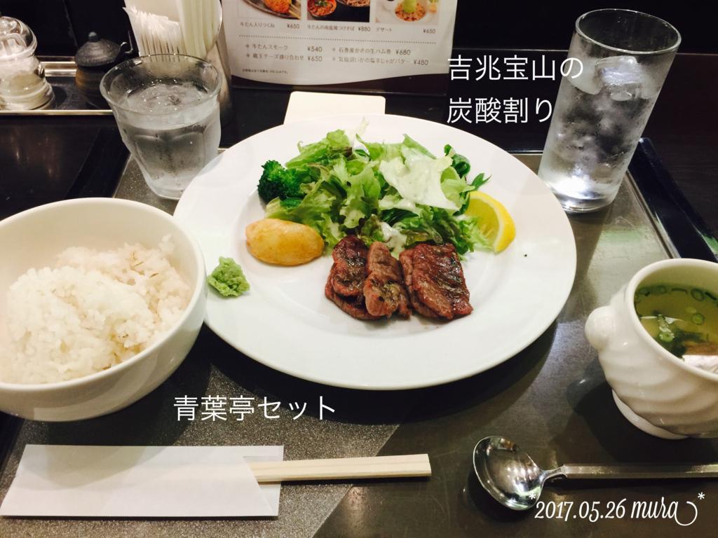 f:id:karutakko-muratan:20170526221915j:plain