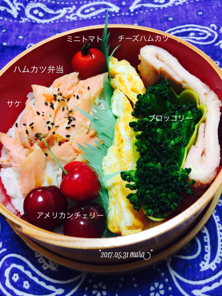 f:id:karutakko-muratan:20170531095622j:plain