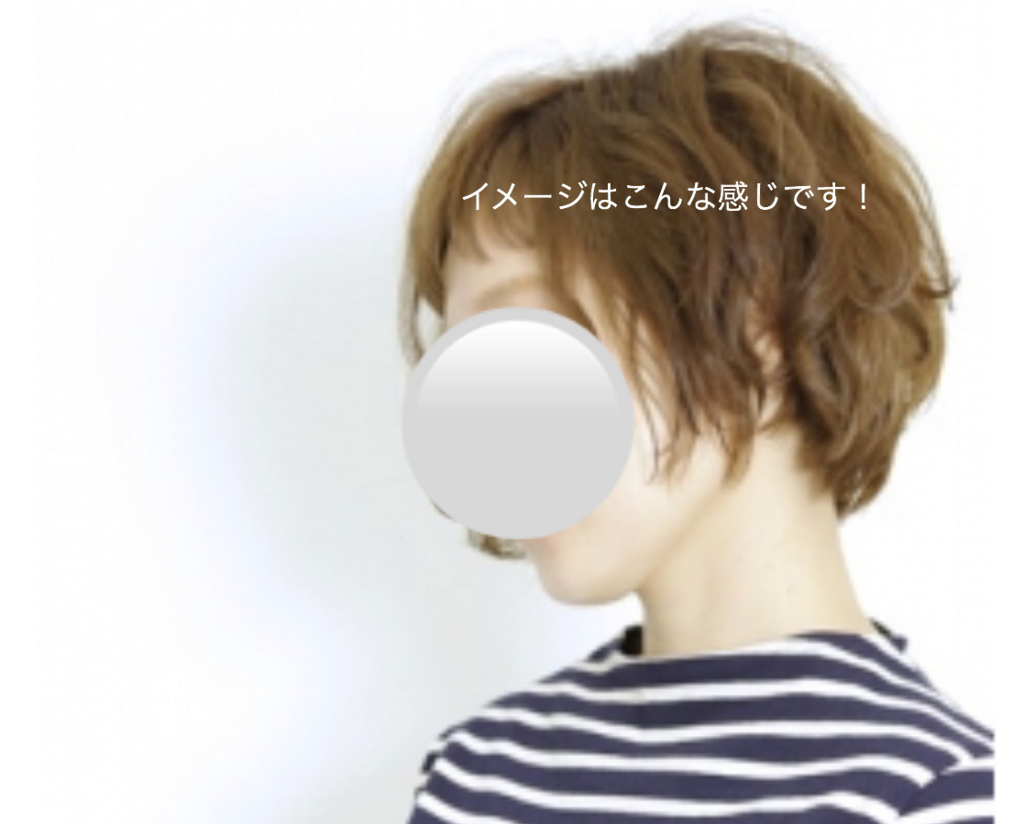 f:id:karutakko-muratan:20170616111332j:plain
