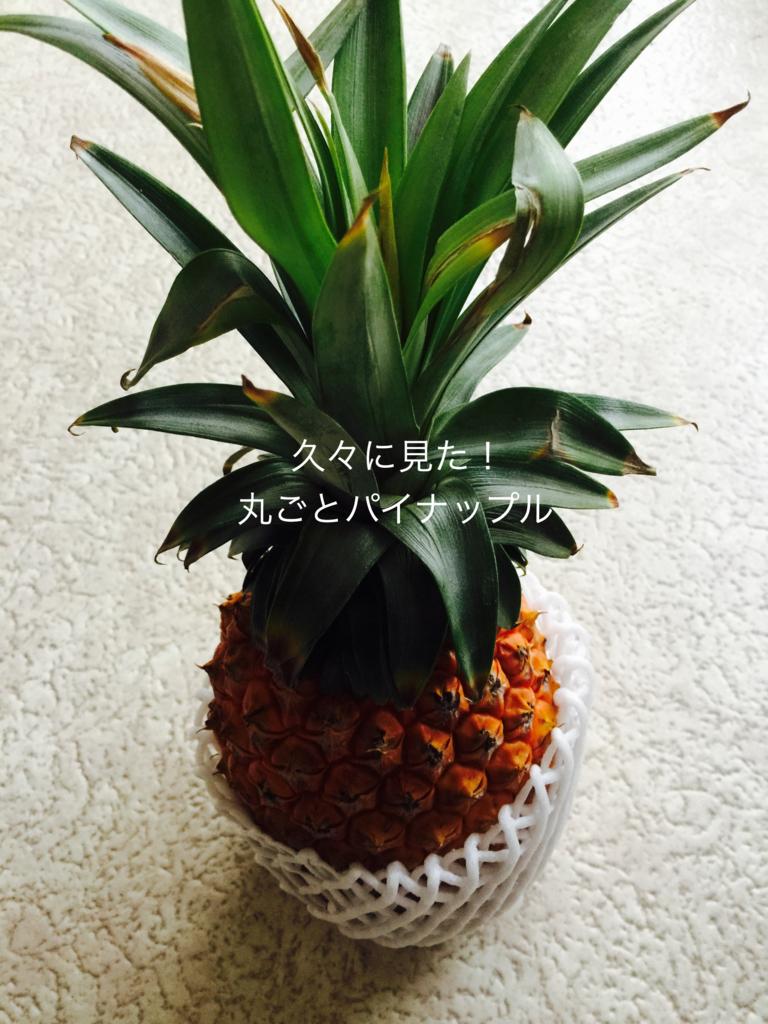 f:id:karutakko-muratan:20170721085147j:plain