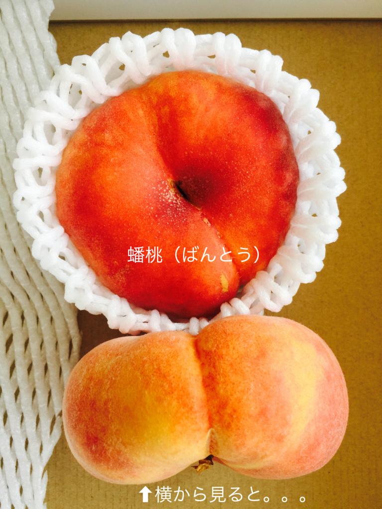f:id:karutakko-muratan:20170828110459j:plain