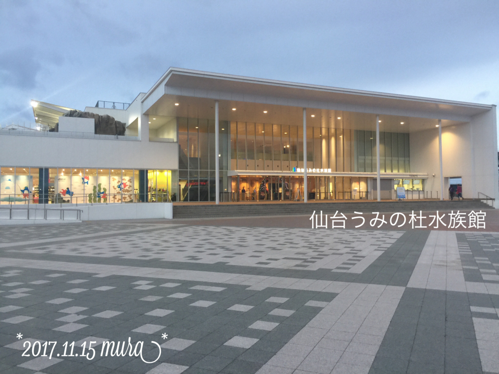 f:id:karutakko-muratan:20171121111358j:plain